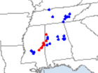 Tornadoes in February? Not that uncommon