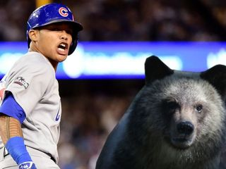 Grizzly bears pick Indians to win World Series
