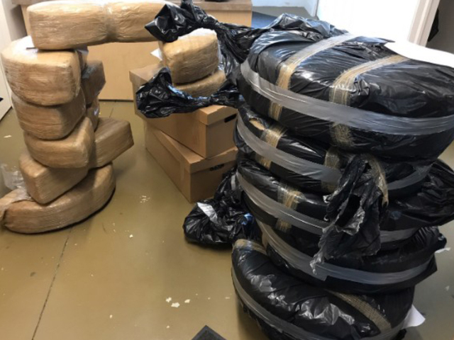 $1M in marijuana found in brand new Ford Fusions