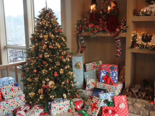 Exploring The Age Old Debate Over Real Vs Fake Christmas Trees